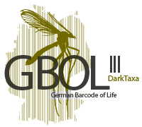 GBOL III Logo